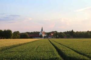 Blick aufs Münster über Felder näher am 6 Juni 2016 (FILEminimizer)